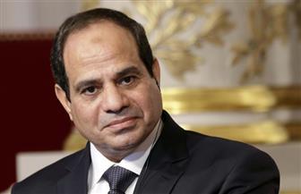 الرئيس السيسى يتسلم أوراق اعتماد عدد من السفراء الأجانب الجدد