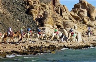 """""""البيئة"""" تنظم حملة نظافة بمحمية أبو جالوم للتوعية بأهمية المحميات الطبيعية"""