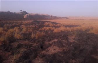 """""""الآثار"""": إخماد حريق محدود بحشائش بعيدا عن منطقة الكاب الأثرية بمدينة إدفو"""