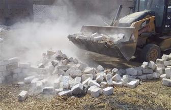 إزالة 150 حالة تعد على الأراضي الزراعية بالمنيا