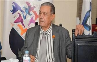 الشافعي: هناك رغبة رومانية للتعاون في مجالات التعليم والطاقة