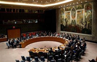 """مجلس الأمن يندد بهجوم نيوزيلندا """"الشائن والجبان"""""""
