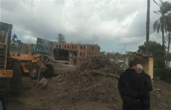 سقوط شجرة ضخمة على سيارة نقل بالغربية.. بسبب سوء الأحوال الجوية | صور