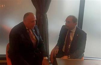 وزير الخارجية يلتقي نظيره الأردني في لندن