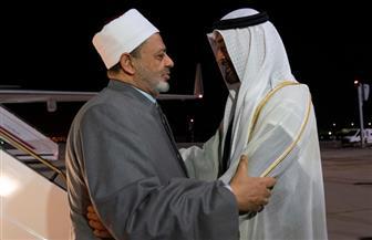 ولي عهد أبو ظبي يستقبل شيخ الأزهر لدى وصوله مطار أبو ظبي| صور