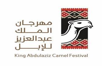 انطلاق مهرجان الملك عبدالعزيز للإبل.. غدا
