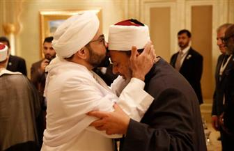 الإمام الأكبر يلتقي كبار القيادات الدينية ويؤكد على ضرورة مواجهة أصحاب الأفكار المتشددة بشجاعة   صور
