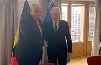 شكري يعقد مباحثات ثنائية مع نظيره البلجيكي على هامش اجتماع بروكسل