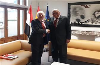 وزير الخارجية سامح شكري يلتقي نظيره الإسباني ببروكسل