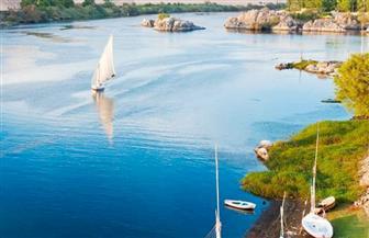 """""""الري"""": هذه حقيقة حجم فيضان النيل هذا العام"""