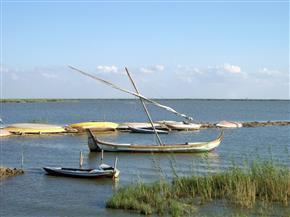محافظة كفر الشيخ: انتظام عملية الصيد بالبحر المتوسط وبحيرة البرلس