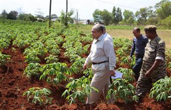 مصر تقتحم الطريق إلى إفريقيا بـ21 مزرعة نموذجية بحلول 2021