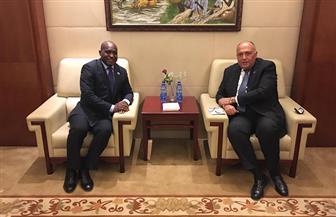شكري يلتقي وزير خارجية سيراليون على هامش اجتماعات المجلس التنفيذي للاتحاد الإفريقي | صور