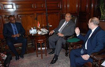 وزير الزراعة: تسهيلات لتجارة التقاوي بدول الكوميسا.. وضوابط للانتقال الآمن لها داخل مصر