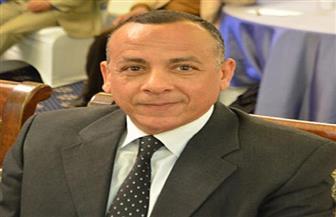 وزيري يحسم الجدل حول التمثال الفرعوني الذي ظهر بكلمة وزير الخارجية |فيديو