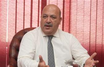 عادل حسني: رئاسة مصر للاتحاد الإفريقي بداية حقيقية لزيادة التجارة والاستثمار