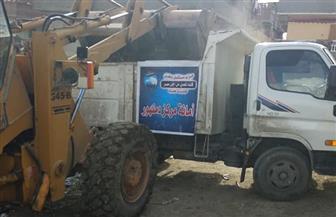 """""""مستقبل وطن"""" ينظم حملة نظافة بمركز دمنهور في محافظة البحيرة   صور"""