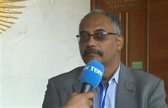 محلل سياسي: مصر عادت بقوة للقارة الإفريقية