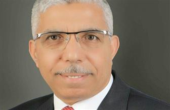 محمد الغباشي: الإخوان يستخدمون عناصر داخلية وخارجية لهدم مؤسسات الدولة المصرية