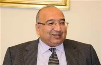 سفير مصر في السويد يلتقي نائب رئيس البرلمان السويدي