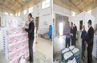 ضبط 21 طن أدوية بيطرية مغشوشة و89 طن أعلاف ومبيدات في حملة أمنية بالإسماعيلية
