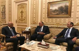 شكري يلتقي عبد العال ويشارك بأعمال لجنة العلاقات الخارجية بمجلس النواب | صور