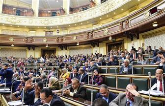 """""""تشريعية النواب"""" تصوت على التعديلات الدستورية.. اليوم"""