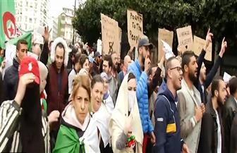 احتفالات في شوارع الجزائر بعد قرار بوتفليقة عدم ترشحه لفترة رئاسية جديدة