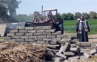 إزالة 52 حالة تعد على الأراضي الزراعية وأملاك الدولة في الغربية