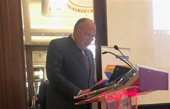 وزير الخارجية يدعو الشركات السلوفينية لزيادة استثماراتها بمصر
