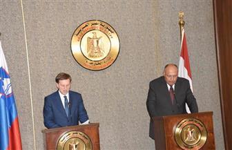 نائب رئيس وزراء سلوفينيا: مصر من أهم الشركاء بمنطقة الشرق الأوسط خاصة في تحقيق الأمن