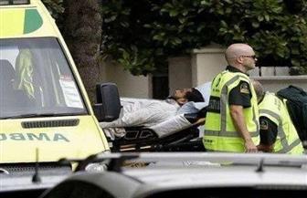 هيئات الإفتاء في العالم تدين الحادث الإرهابي في نيوزيلندا .. ونجم يدعو إلى تكاتف دولي لمكافحة خطاب الكراهية