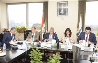 بيترسن: رئاسة مصر ورومانيا للاتحادين الإفريقي والأوروبي محور مهم لبدء انطلاقة في الاستثمار بين البلدين