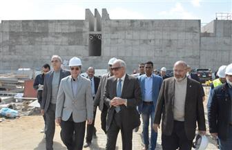 الجيزة: الانتهاء من المرحلة الأولى لمحطة مياه جزيرة الدهب نهاية أبريل المقبل | صور
