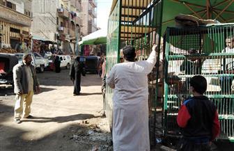 رفع وإزالة مخلفات وإشغالات وتسوية وتمهيد شوارع بمدينة منفلوط | صور