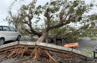 رئيس موزمبيق: حصيلة ضحايا الإعصار إيداي قد تصل إلى ألف قتيل