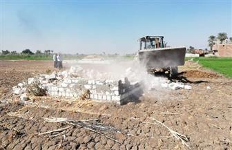 محافظ أسيوط: تنفيذ 47 حالة إزالة تعديات في أبوتيج |صور