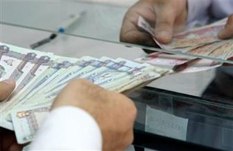 خلال يوليو.. 719.9 مليون دولار زيادة في تحويلات المصريين بالخارج