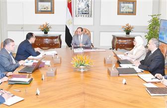 الرئيس السيسي يجتمع مع رئيس مجلس الوزراء ووزيرة الصحة ووزير قطاع الأعمال العام