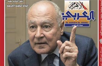 أحمد أبو الغيط في حوار مع رئيس تحرير الأهرام العربي: لا أحد ينافسنى فى تقديرى للرئيس السيسي | صور