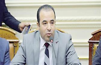 رئيس اتصالات النواب: التحول الرقمي في مصر سيصل لـ 100% خلال أشهر| فيديو