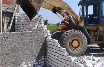 حملة لإزالة التعديات على 140 مترا من الأراضى الزراعية وأملاك الدولة في كفر سعد