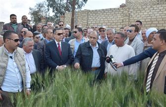 وزير الزراعة ومحافظ بني سويف يتفقدان حقولا إرشادية لمحصول القمح بمركز أهناسيا | صور