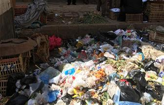 البيئة: رفع تراكم مخلفات من أمام مستشفى ميت غمر بالدقهلية   صور