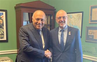 وزير الخارجية يلتقي قيادات اللجان الرئيسية بمجلس النواب الأمريكي
