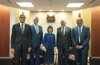 وزير الري يبحث مع سنغافورة تعزيز التعاون لإعادة استخدام وتحلية المياه ومواجهة التغيرات المناخية | صور