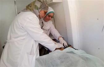 صحة جنوب سيناء: الكشف على 184 حالة بقافلة وادي مجيرح بدهب | صور