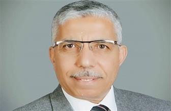 محمد الغباشى: لا بد من تضافر جميع مؤسسات الدولة لمواجهة خطر الشائعات