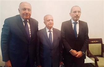 سامح شكرى يجتمع بنظرائه من السعودية والأردن والعراق على هامش اجتماعات القمة العربية بتونس| صور
