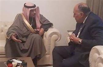 شكري يلتقي نائب رئيس الوزراء الكويتي على هامش اجتماعات القمة العربية بتونس